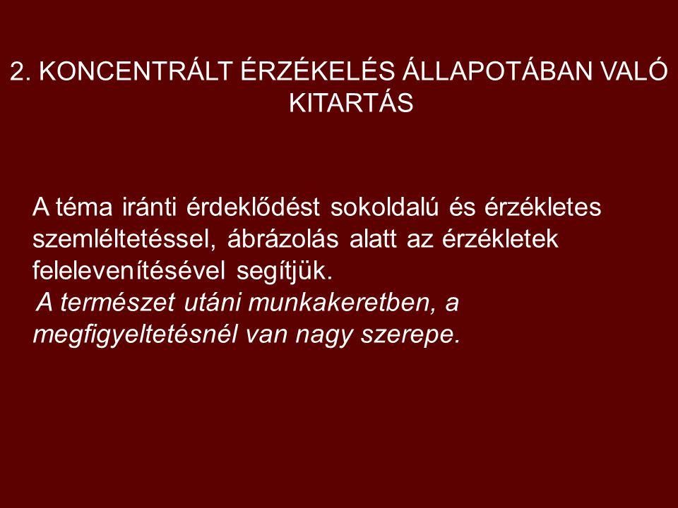2. KONCENTRÁLT ÉRZÉKELÉS ÁLLAPOTÁBAN VALÓ KITARTÁS