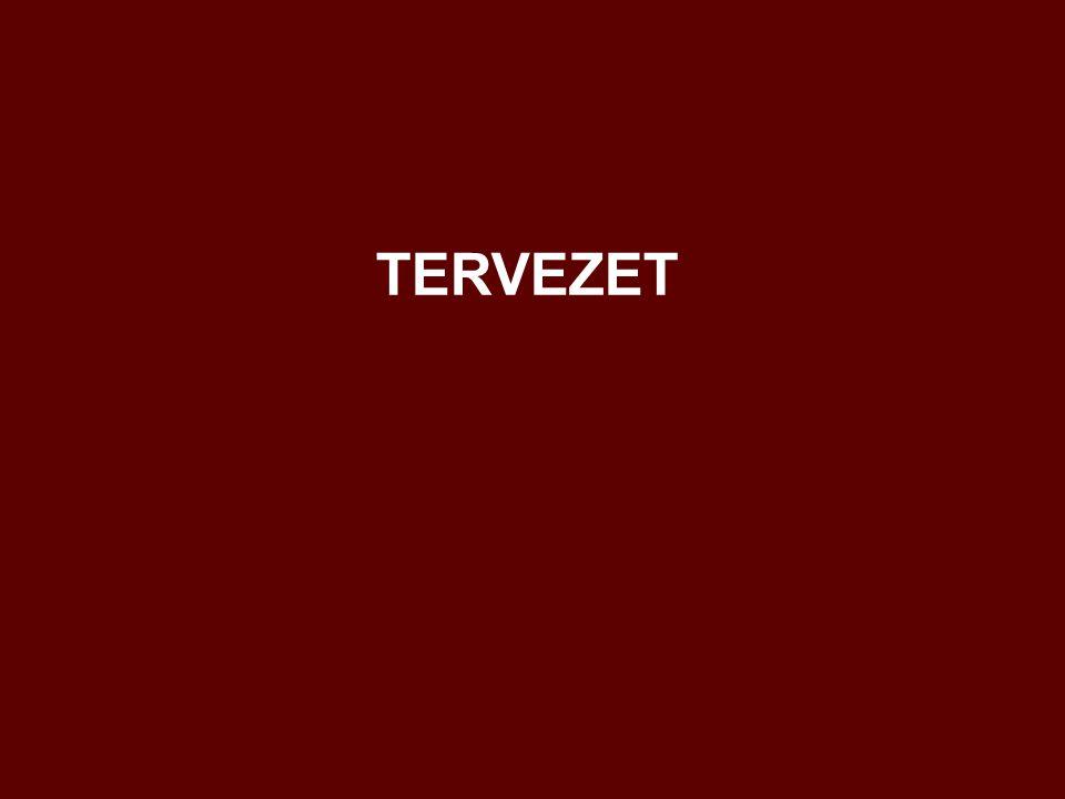 TERVEZET