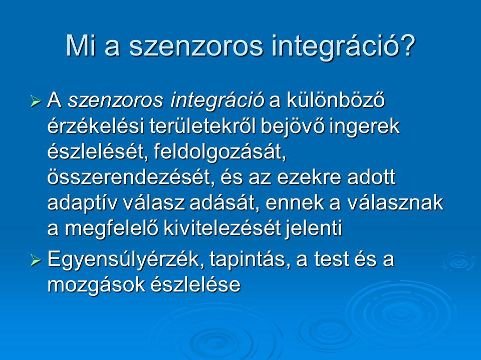 Mi a szenzoros integráció