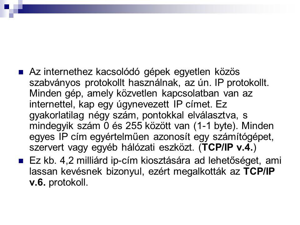 Az internethez kacsolódó gépek egyetlen közös szabványos protokollt használnak, az ún. IP protokollt. Minden gép, amely közvetlen kapcsolatban van az internettel, kap egy úgynevezett IP címet. Ez gyakorlatilag négy szám, pontokkal elválasztva, s mindegyik szám 0 és 255 között van (1-1 byte). Minden egyes IP cím egyértelműen azonosít egy számítógépet, szervert vagy egyéb hálózati eszközt. (TCP/IP v.4.)