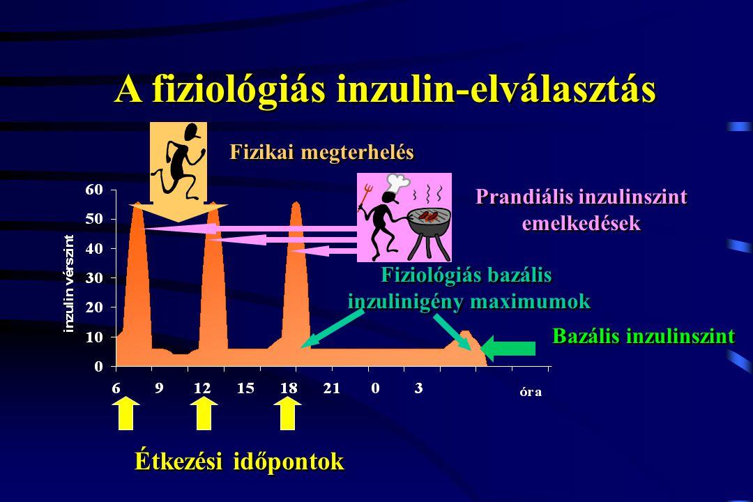 A fiziológiás inzulin-elválasztás
