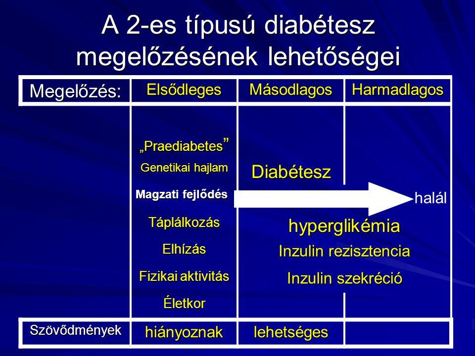 A 2-es típusú diabétesz megelőzésének lehetőségei