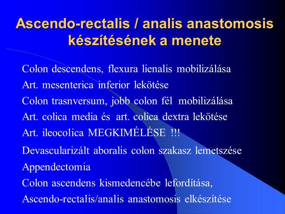 Ascendo-rectalis / analis anastomosis készítésének a menete