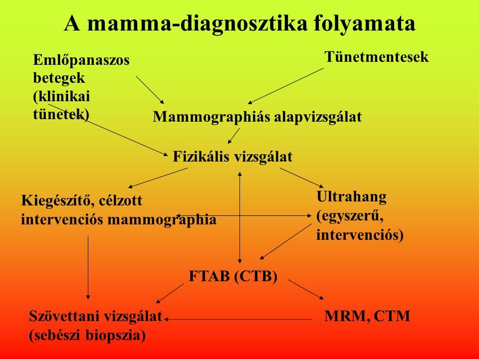 A mamma-diagnosztika folyamata