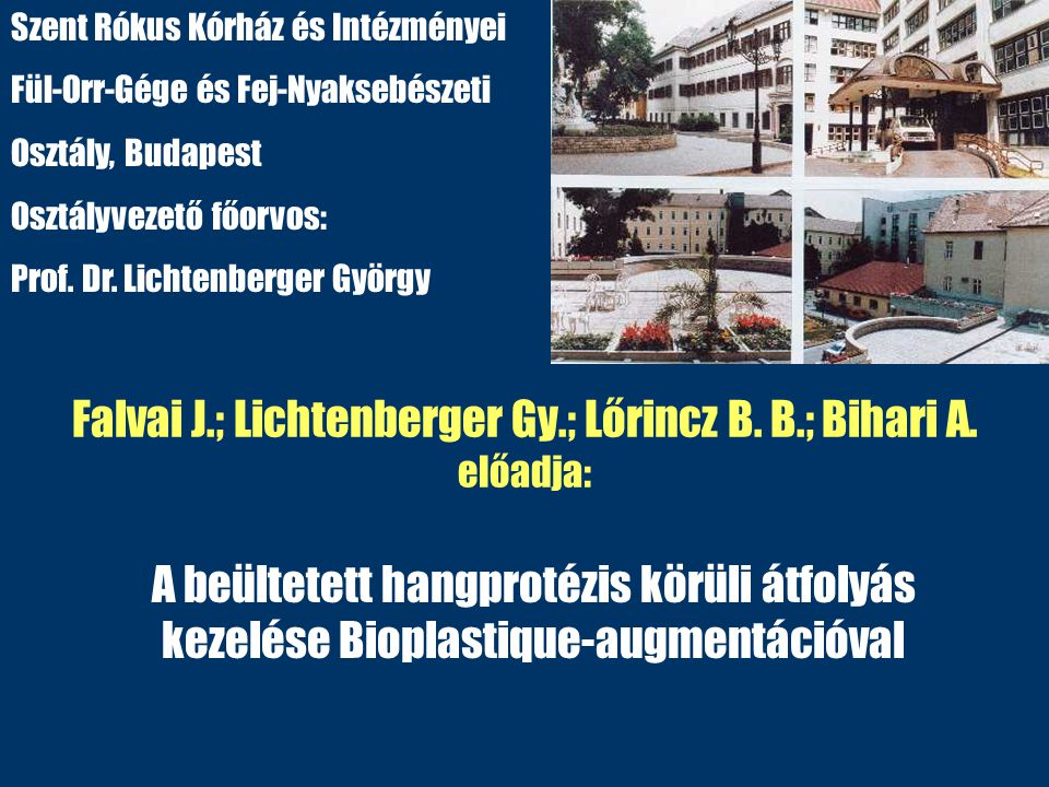 Falvai J.; Lichtenberger Gy.; Lőrincz B. B.; Bihari A. előadja: