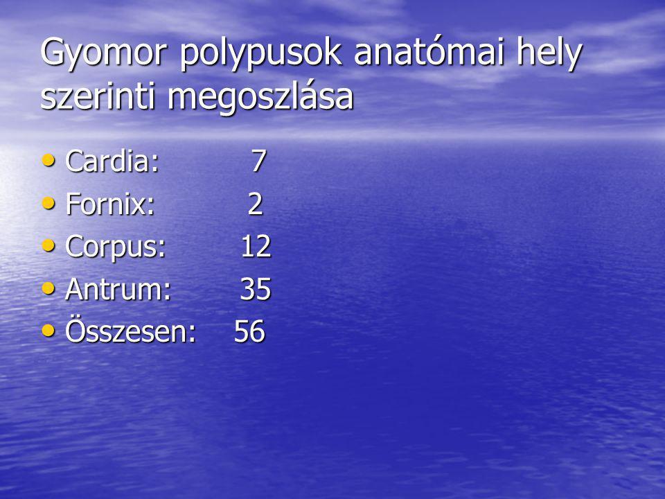 Gyomor polypusok anatómai hely szerinti megoszlása