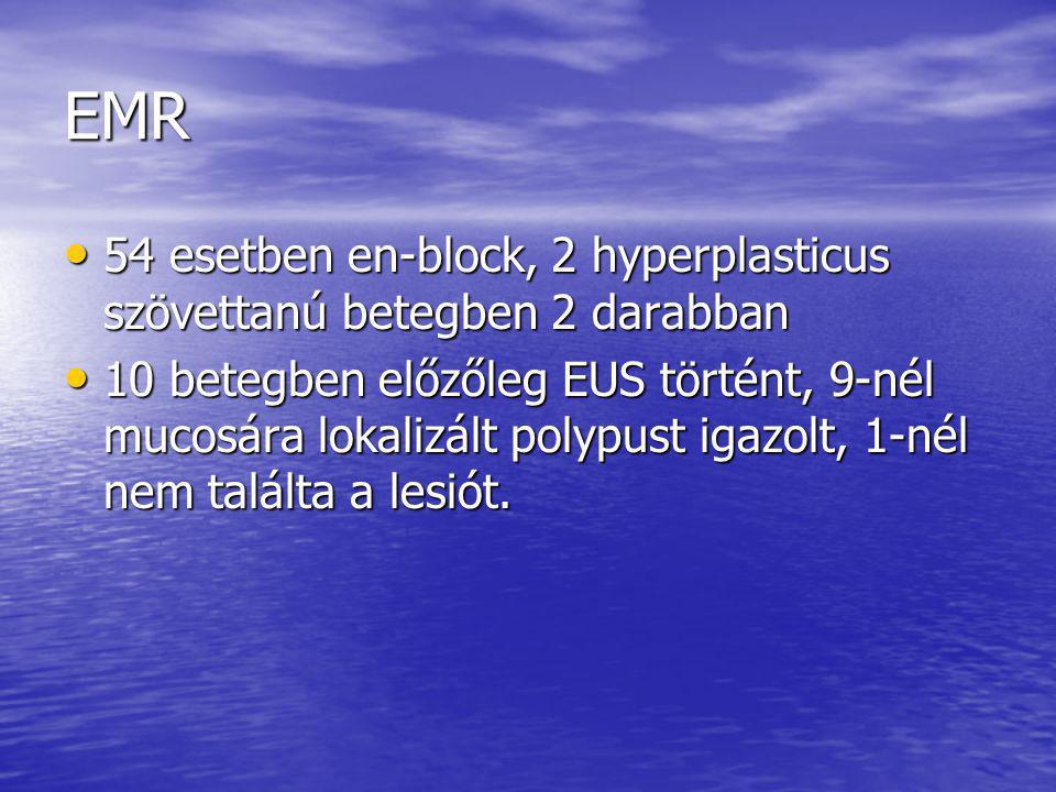 EMR 54 esetben en-block, 2 hyperplasticus szövettanú betegben 2 darabban.