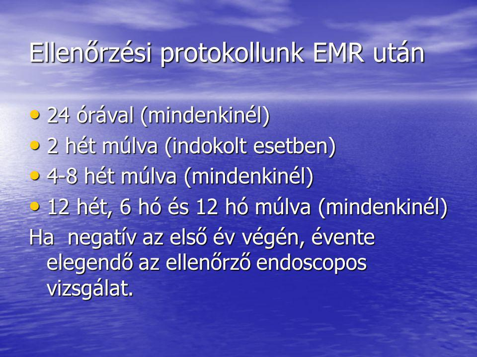 Ellenőrzési protokollunk EMR után
