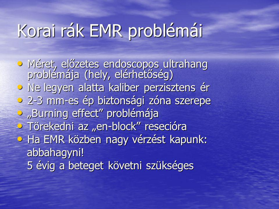 Korai rák EMR problémái