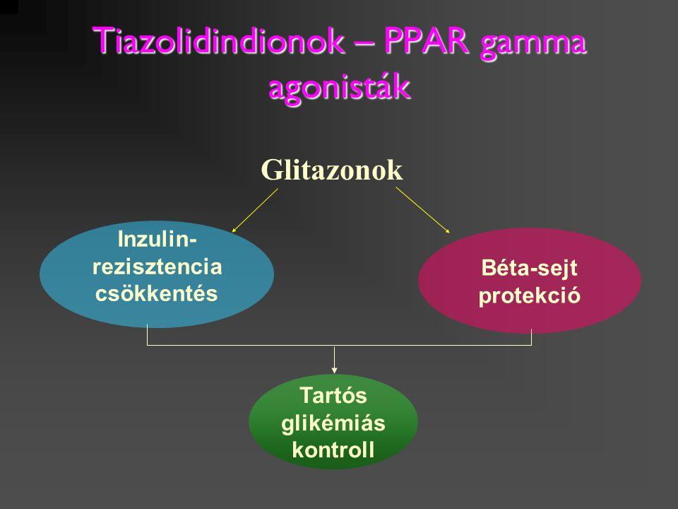 Tiazolidindionok – PPAR gamma agonisták