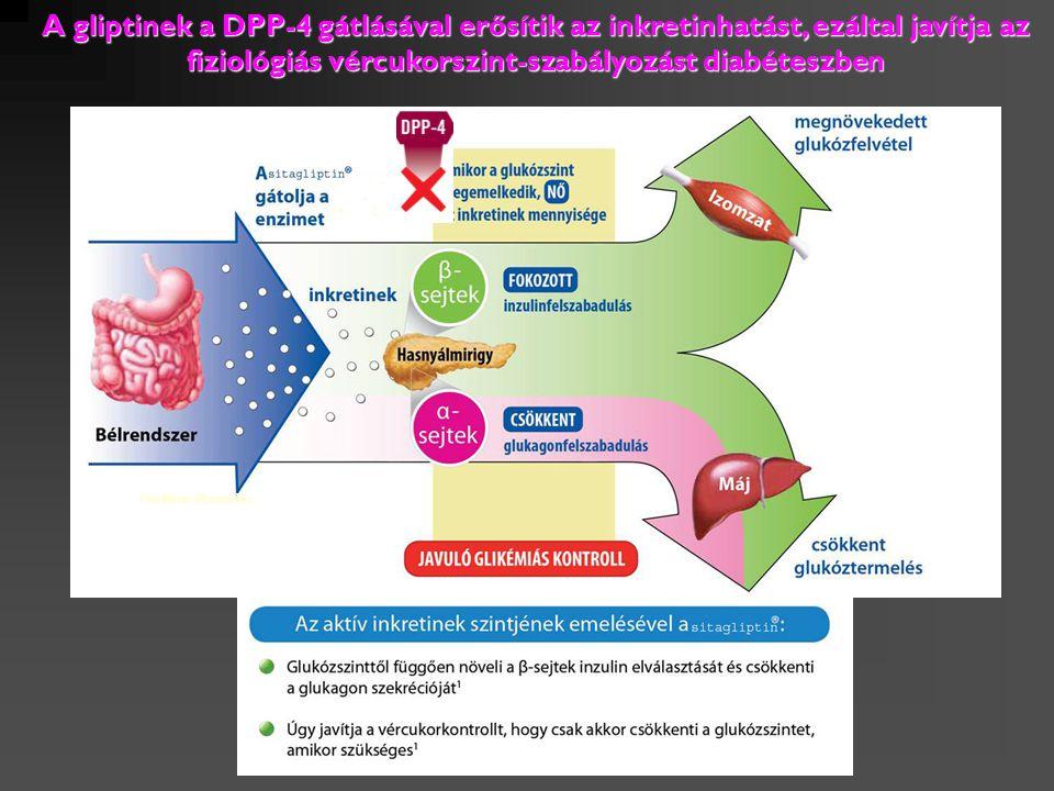 A gliptinek a DPP-4 gátlásával erősítik az inkretinhatást, ezáltal javítja az fiziológiás vércukorszint-szabályozást diabéteszben