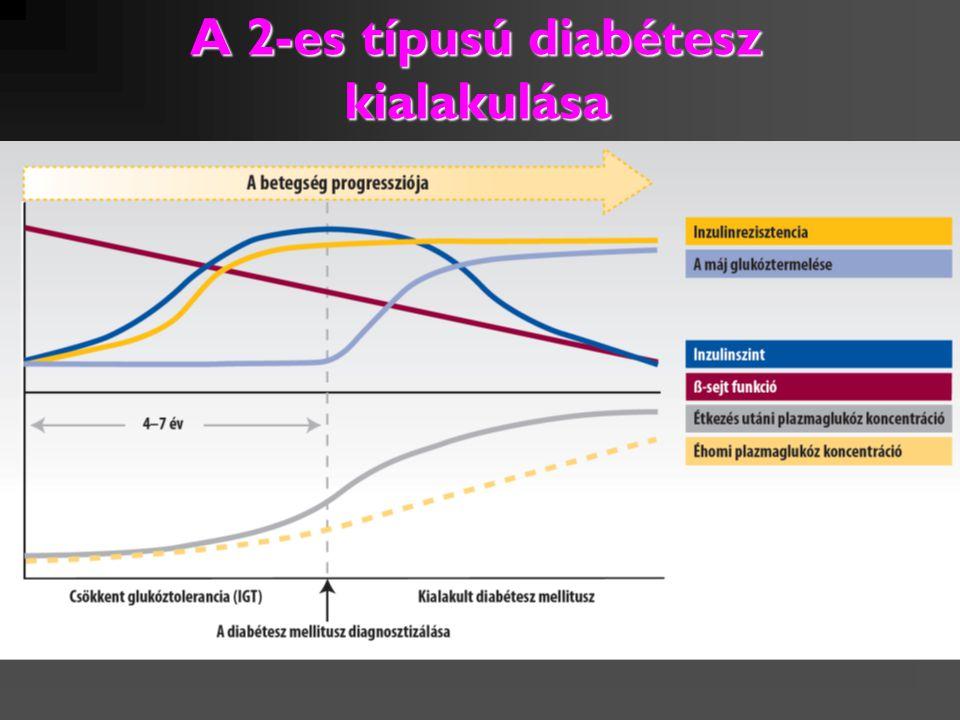 A 2-es típusú diabétesz kialakulása