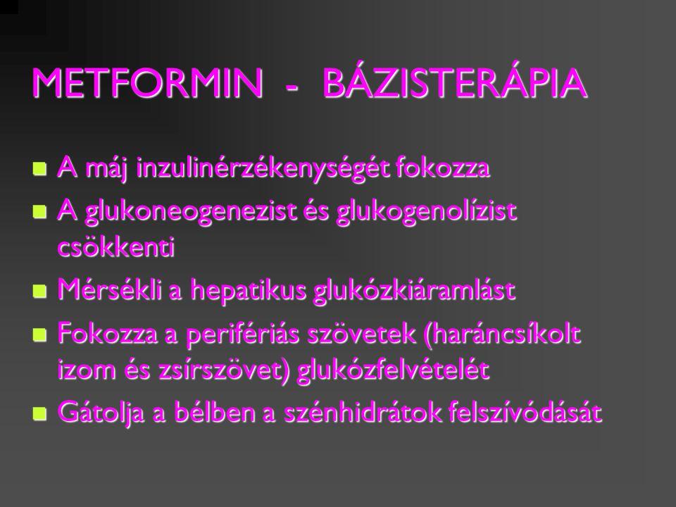 METFORMIN - BÁZISTERÁPIA