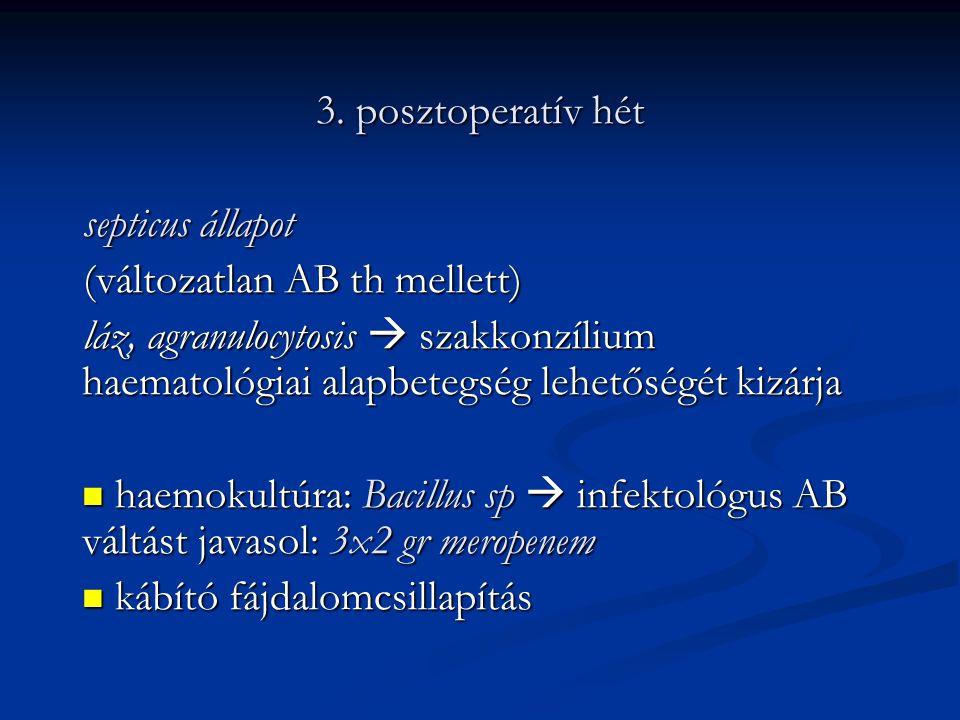 3. posztoperatív hét septicus állapot. (változatlan AB th mellett)