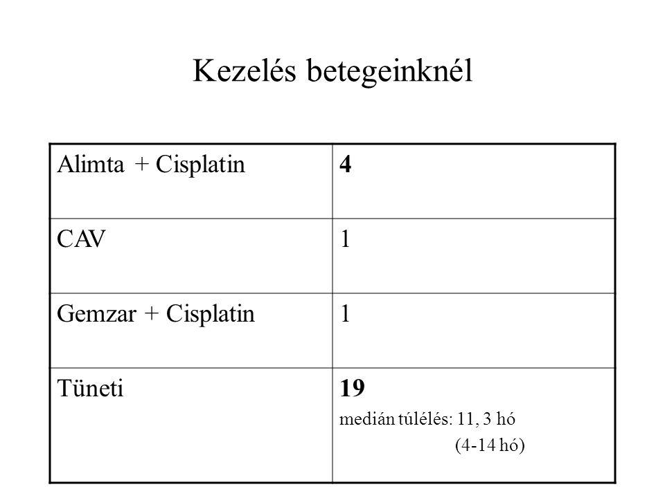 Kezelés betegeinknél Alimta + Cisplatin 4 CAV 1 Gemzar + Cisplatin