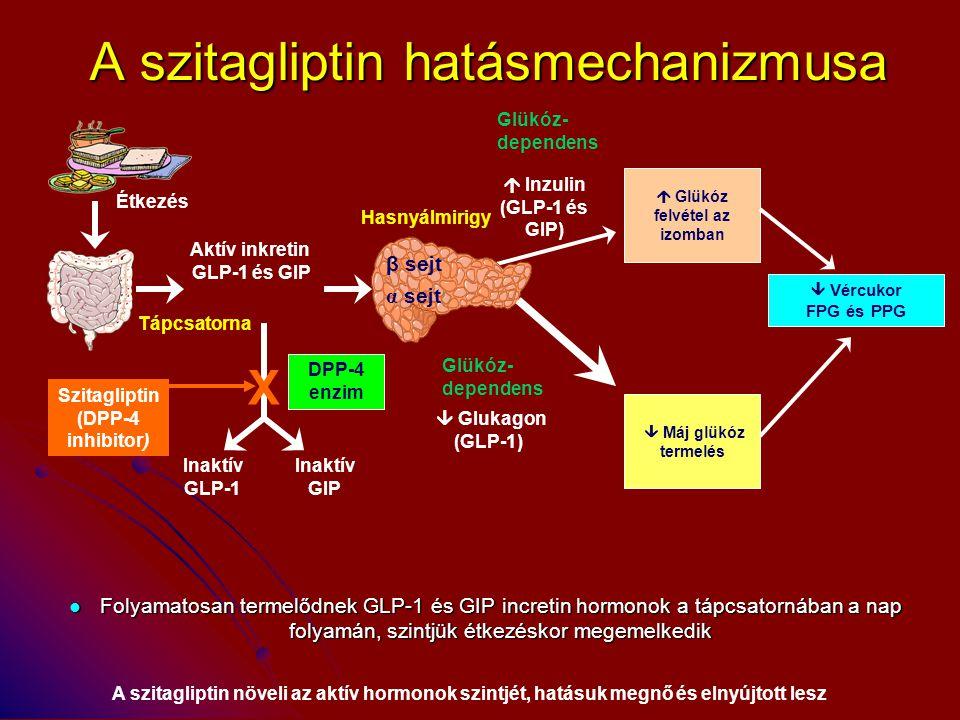 A szitagliptin hatásmechanizmusa