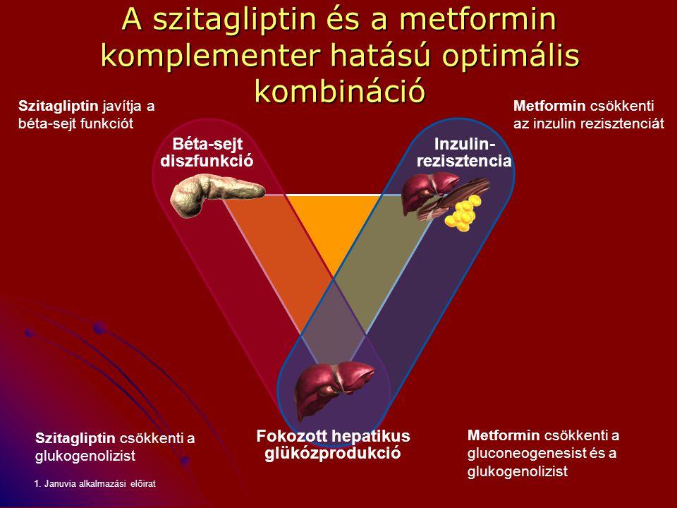 A szitagliptin és a metformin komplementer hatású optimális kombináció