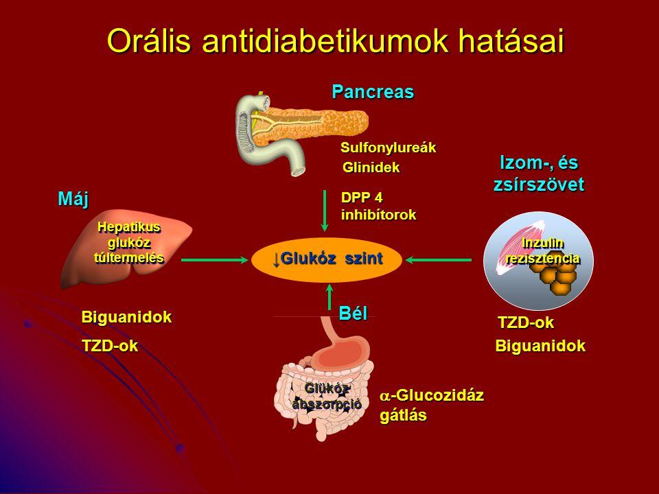 Orális antidiabetikumok hatásai