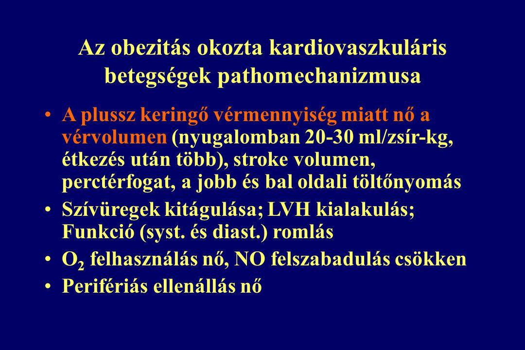 Az obezitás okozta kardiovaszkuláris betegségek pathomechanizmusa
