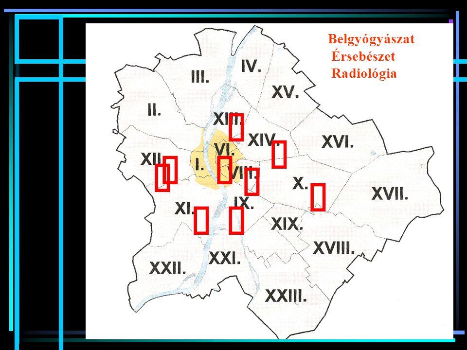 Belgyógyászat Érsebészet Radiológia ű ű ű ű ű ű ű ű ű Meskó Éva dr.
