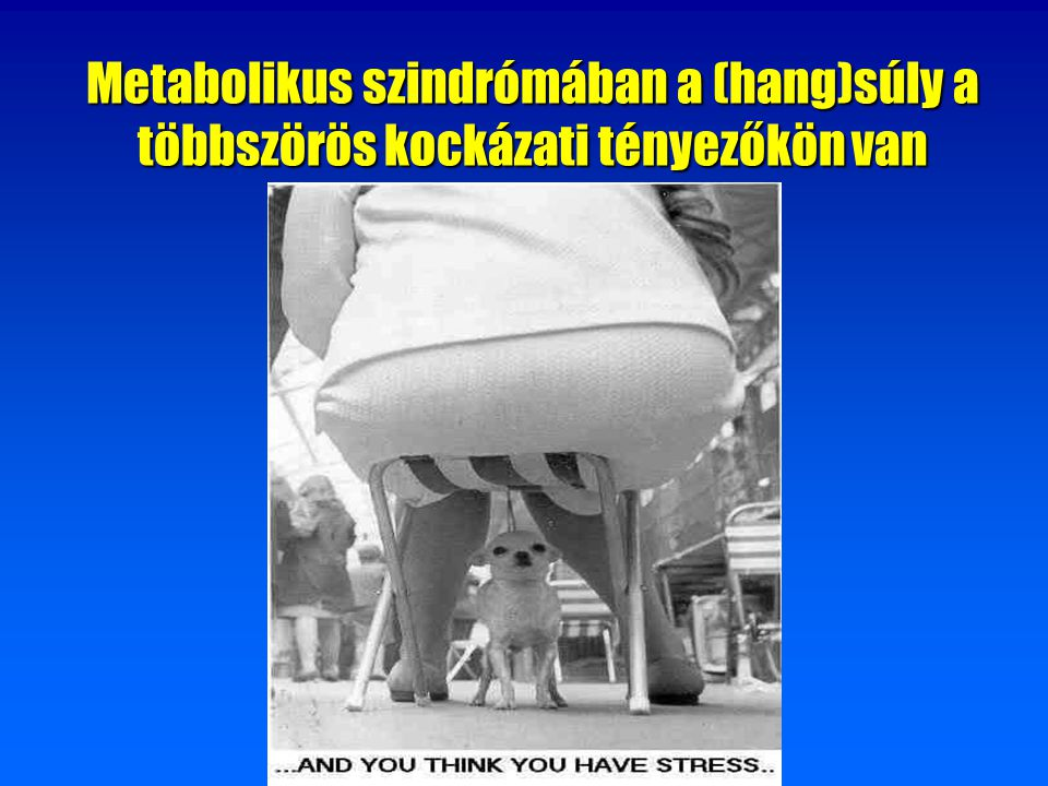 Metabolikus szindrómában a (hang)súly a többszörös kockázati tényezőkön van
