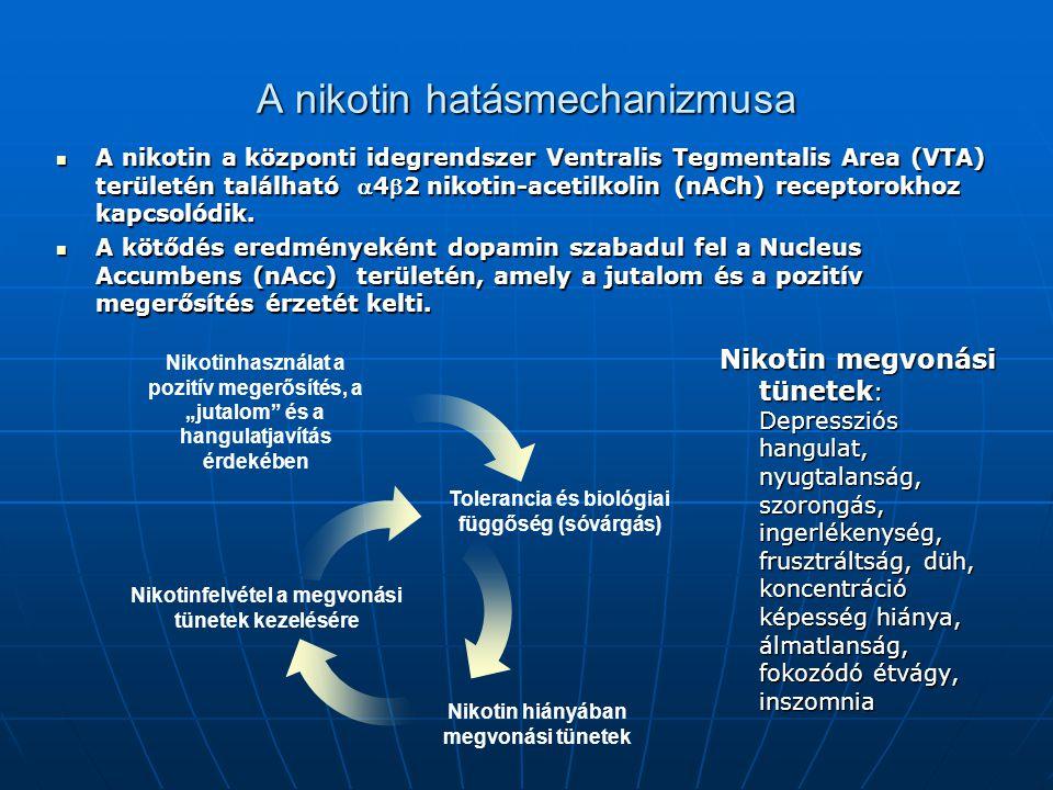 A nikotin hatásmechanizmusa