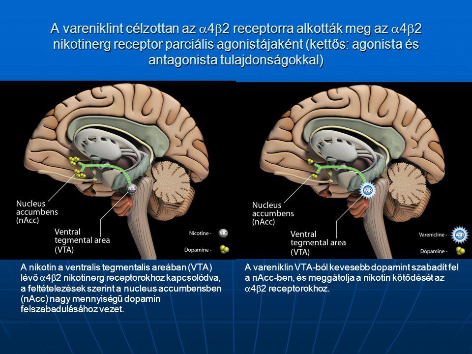 A vareniklint célzottan az 42 receptorra alkották meg az 42 nikotinerg receptor parciális agonistájaként (kettős: agonista és antagonista tulajdonságokkal)