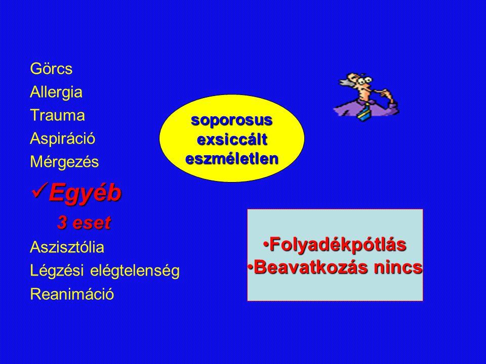 Egyéb 3 eset Folyadékpótlás Beavatkozás nincs Görcs Allergia Trauma