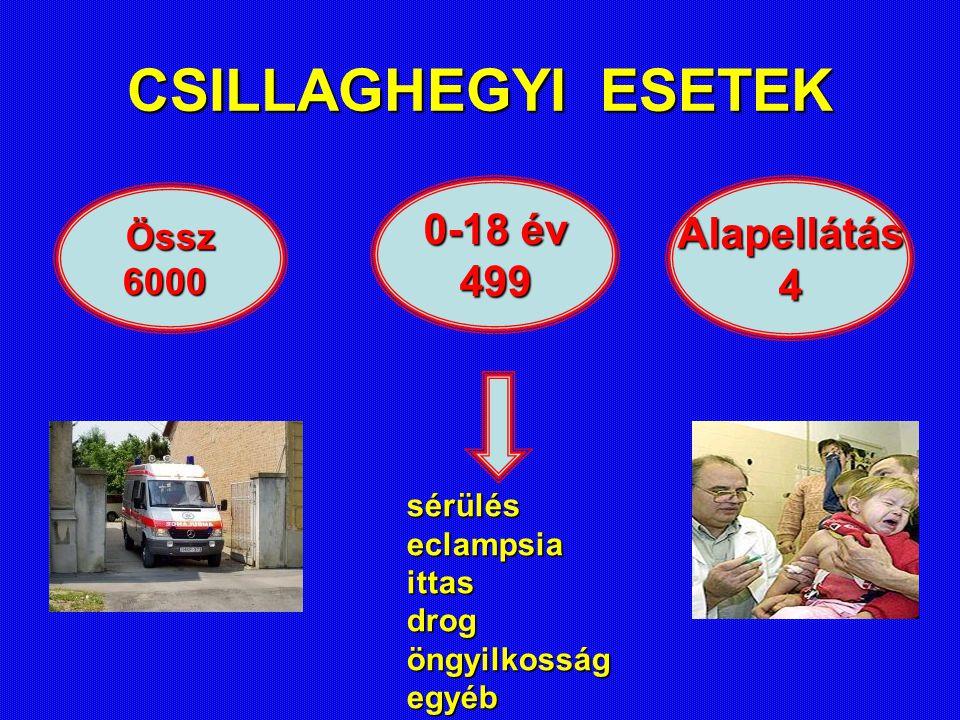 CSILLAGHEGYI ESETEK 0-18 év Alapellátás 499 4 Össz 6000 sérülés