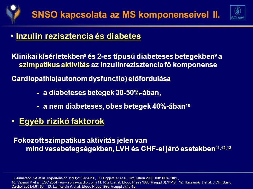 SNSO kapcsolata az MS komponenseivel II.