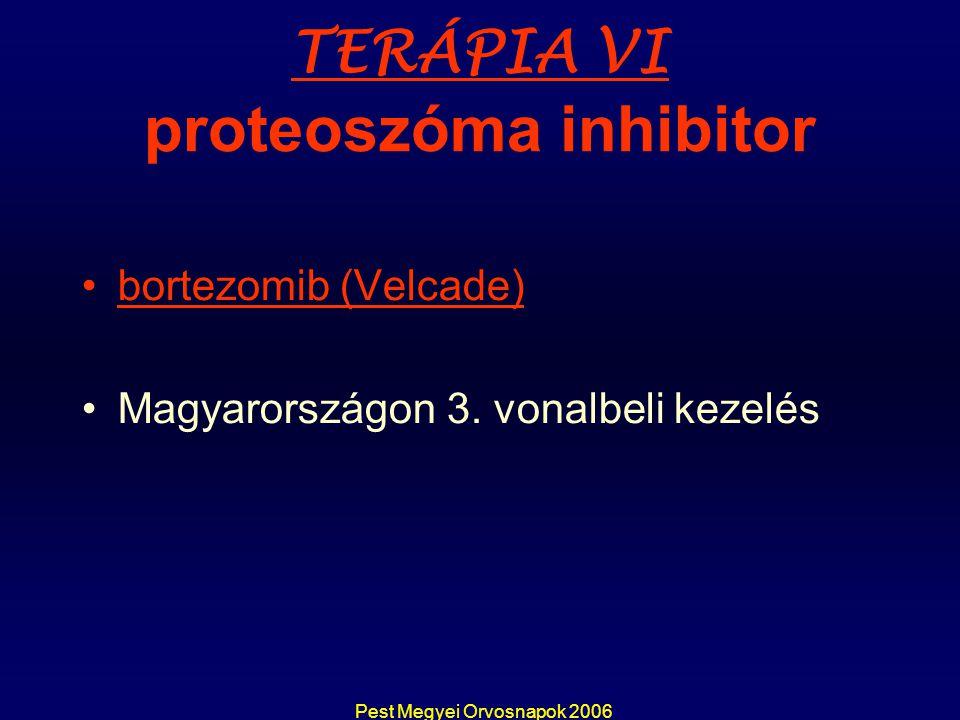 TERÁPIA VI proteoszóma inhibitor