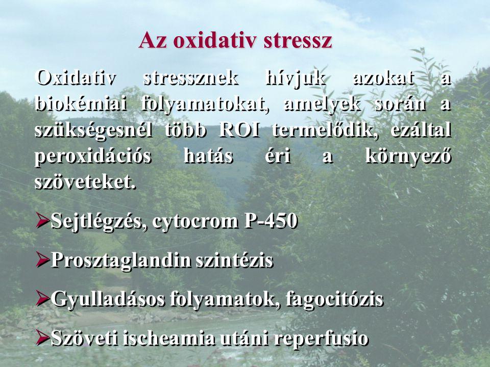 Az oxidativ stressz