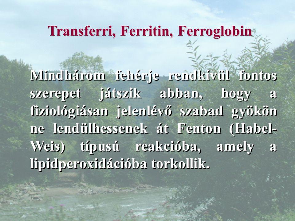 Transferri, Ferritin, Ferroglobin
