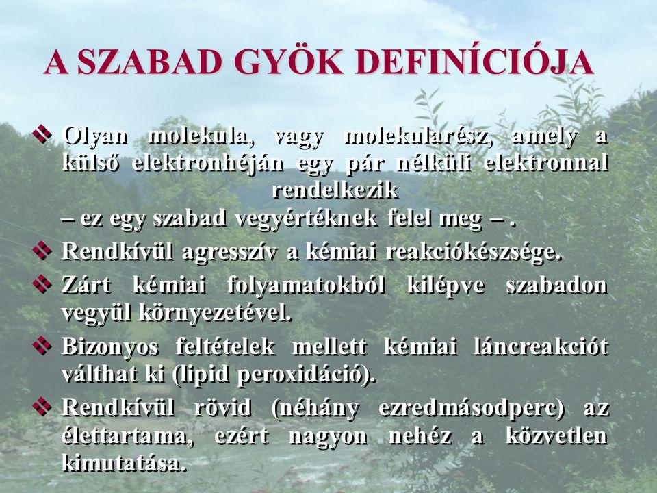 A SZABAD GYÖK DEFINÍCIÓJA