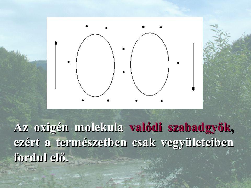 Az oxigén molekula valódi szabadgyök, ezért a természetben csak vegyületeiben fordul elő.