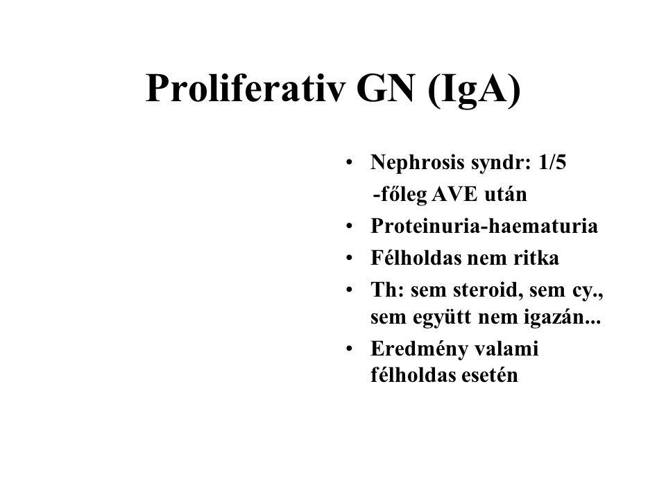 Proliferativ GN (IgA) Nephrosis syndr: 1/5 -főleg AVE után