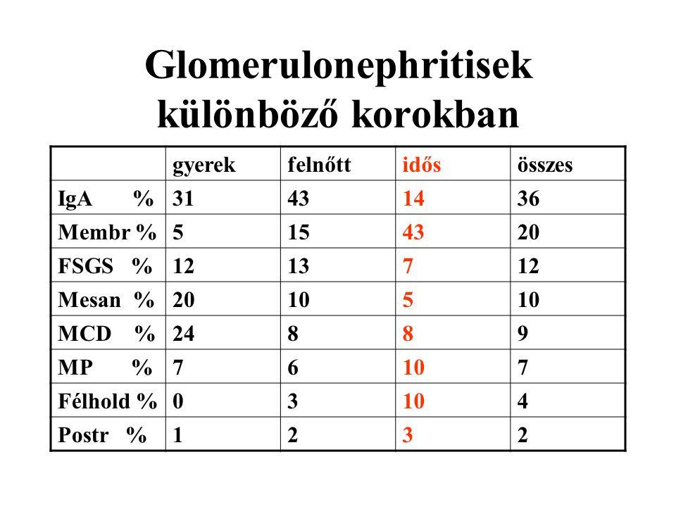 Glomerulonephritisek különböző korokban