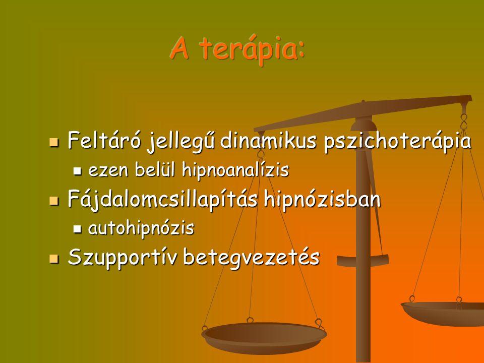 A terápia: Feltáró jellegű dinamikus pszichoterápia