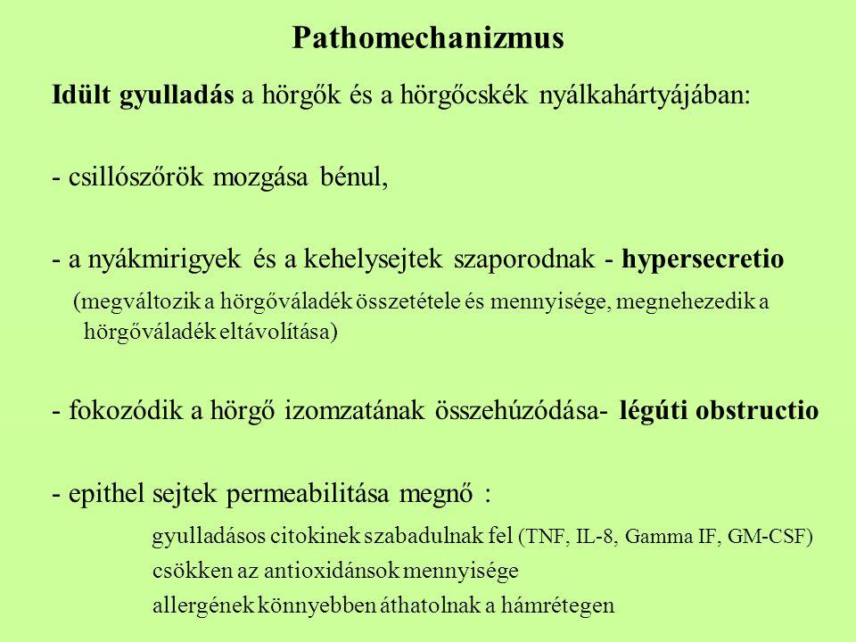 Pathomechanizmus Idült gyulladás a hörgők és a hörgőcskék nyálkahártyájában: - csillószőrök mozgása bénul,