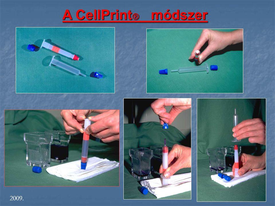 A CellPrint módszer 2009. S
