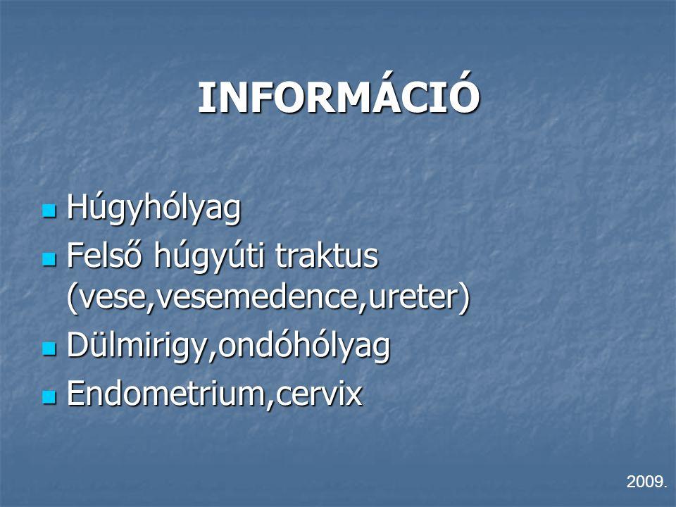 INFORMÁCIÓ Húgyhólyag Felső húgyúti traktus (vese,vesemedence,ureter)