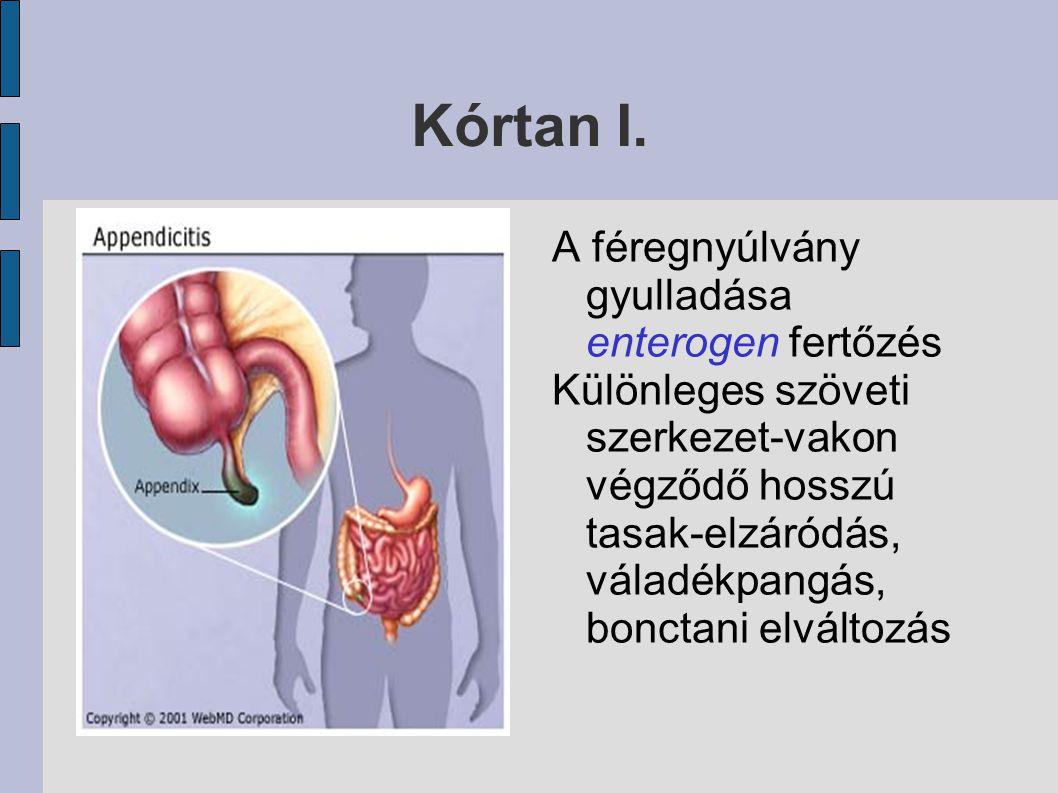 Kórtan I. A féregnyúlvány gyulladása enterogen fertőzés