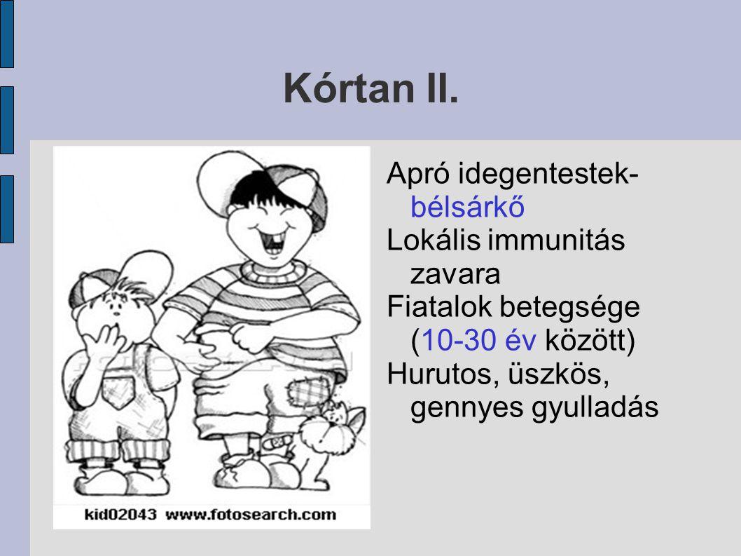 Kórtan II. Apró idegentestek- bélsárkő Lokális immunitás zavara
