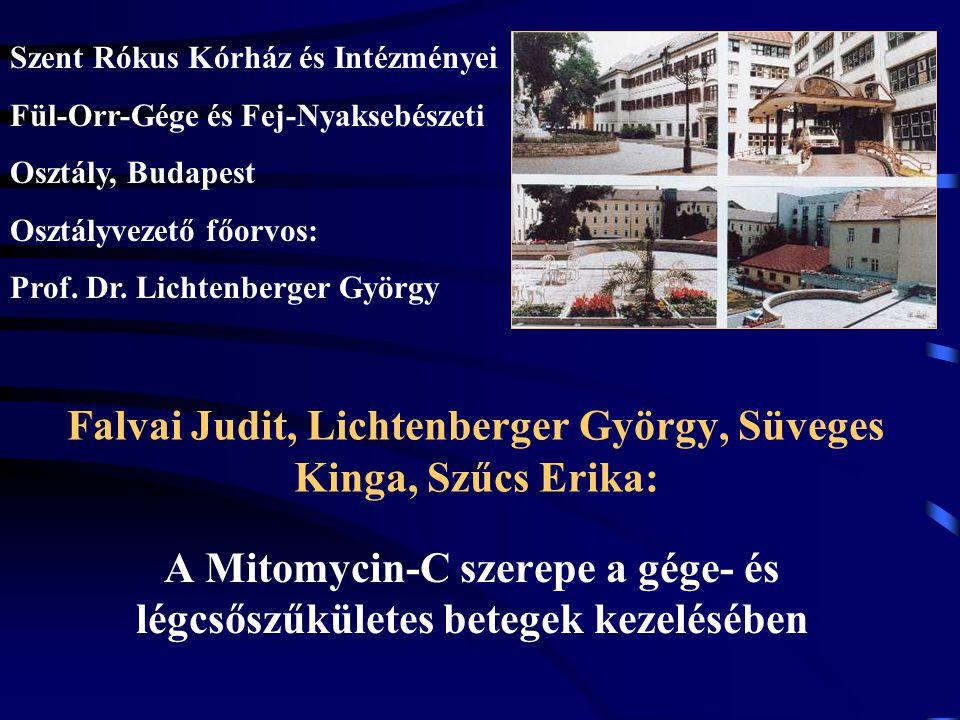 Falvai Judit, Lichtenberger György, Süveges Kinga, Szűcs Erika: