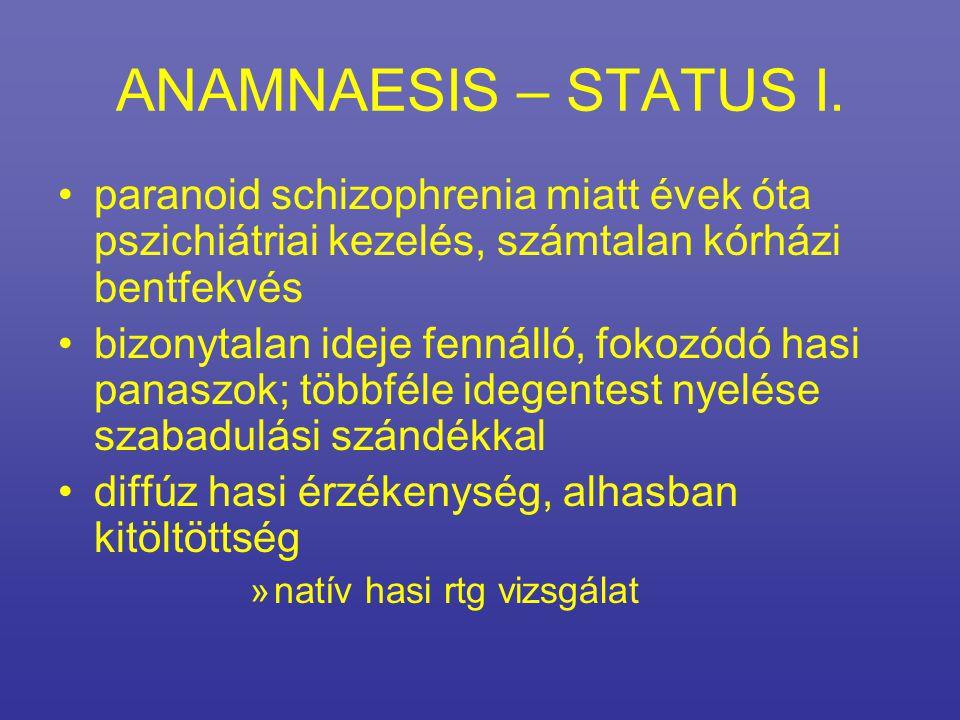 ANAMNAESIS – STATUS I. paranoid schizophrenia miatt évek óta pszichiátriai kezelés, számtalan kórházi bentfekvés.