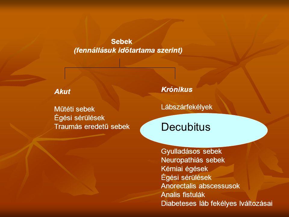 Decubitus Sebek (fennállásuk időtartama szerint) Krónikus Akut