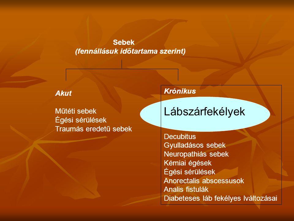 Lábszárfekélyek Sebek (fennállásuk időtartama szerint) Krónikus Akut