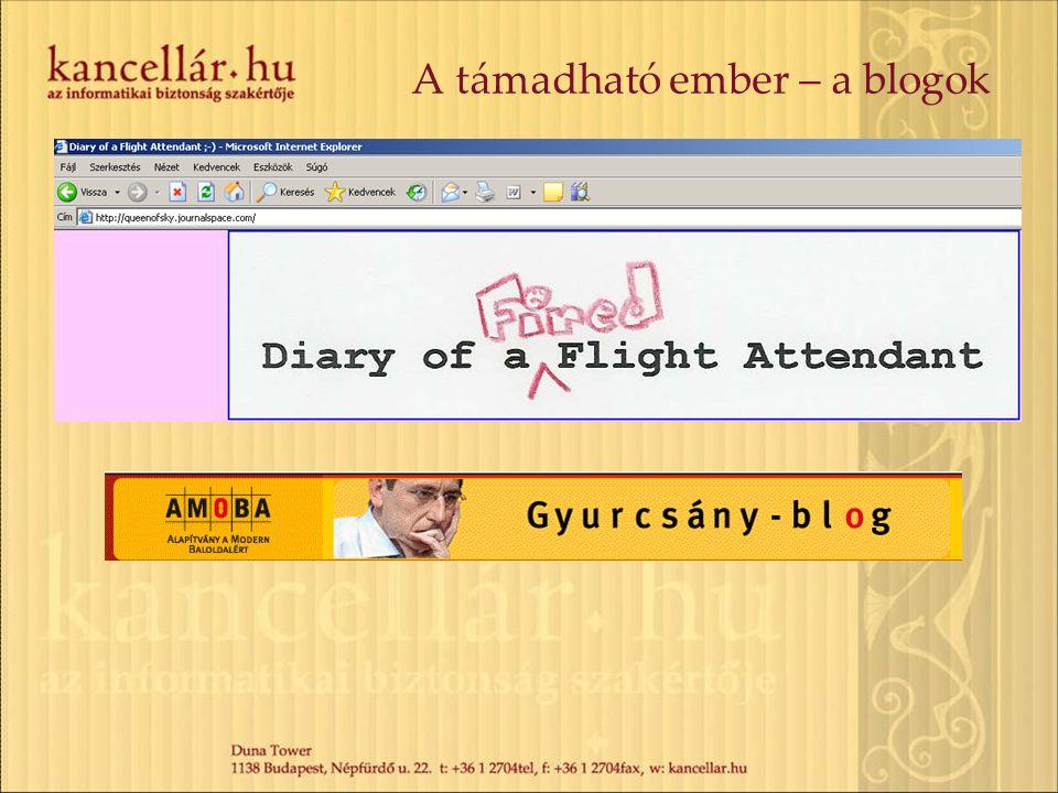 A támadható ember – a blogok