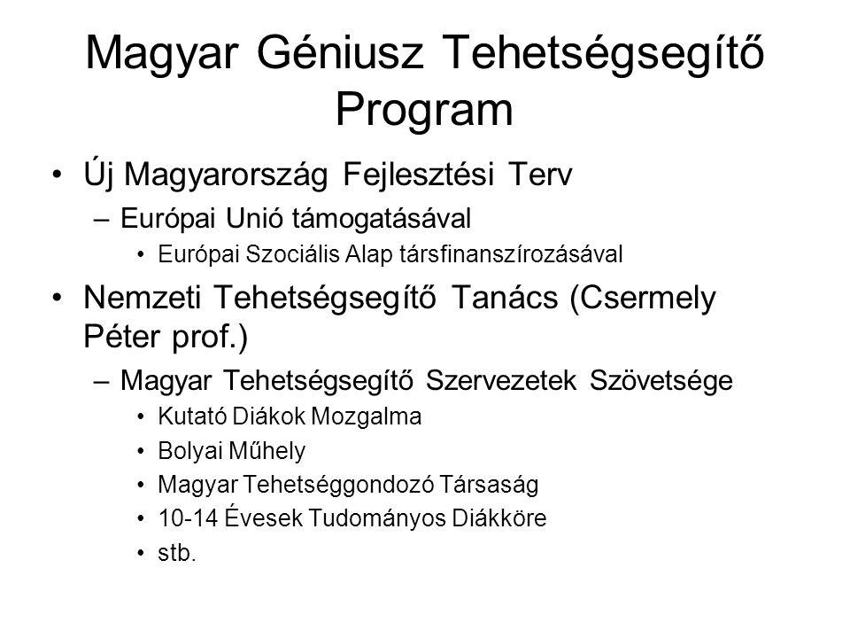 Magyar Géniusz Tehetségsegítő Program