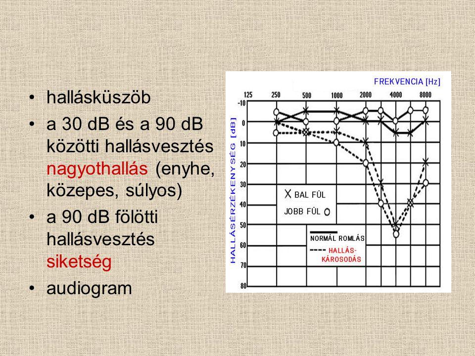 hallásküszöb a 30 dB és a 90 dB közötti hallásvesztés nagyothallás (enyhe, közepes, súlyos) a 90 dB fölötti hallásvesztés siketség.